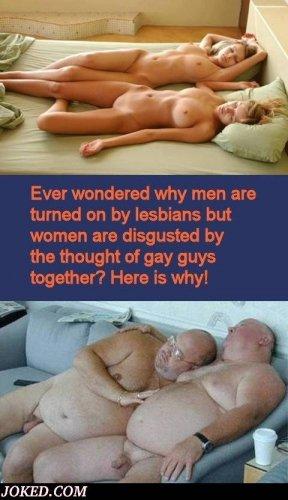 lesbianvsgay.jpg